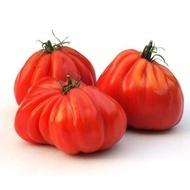 Inima de Albenga (60 seminte) tomate crete nedeterminate semitimpurii, Opal