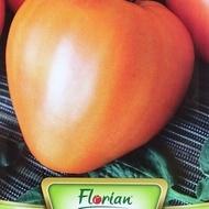 Inima de Bivol Portocaliu - 0.5 gr - Seminte de Rosii Inima de Bivol Portocaliu Soi Semitimpuriu Nedeterminat