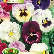 Panselute MIX - Seminte de Viola Mix de la Florian