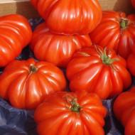 Rosii Marmande (1 kg), seminte de rosii crete nedeterminate, productie ridicata, Agrosem