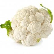 Seminte conopida Igloo (1.5 gr), toleranta la schimbari de temperatura, Florian