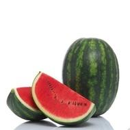 Sensei F1 - 500 sem - Seminte de pepene verde tip Crimson cu o calitate excelenta a pulpei fara risc de crapare gust delicios textura ferma  fructe atractive ideale pentru deschiderea sezonului de vanzari de la Sakata