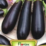 Vinete Long Purple - 50 gr - Seminte de Vinete Soi Timpuriu - Lungi Violet de la Florian Bulgaria