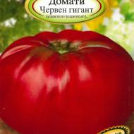 Gigant Rosu (0.5 gr) seminte de rosii nedeterminate foarte mari pana la 2 kg, Florian Bulgaria