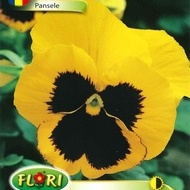 Pansele GALBENE - Seminte Flori Pansele GALBENE de la Florian