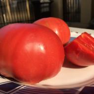 Rozamax Tomate Roz (0.5 gr), Seminte de Rosii Gigant roze Rozamax de la Florian Bulgaira Soi Nou