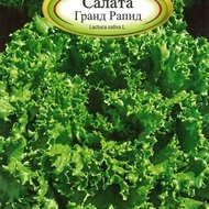 Salata GRAND RAPID - 2 gr - Seminte Salata Soi Timpuriu cu Frunze Buclate