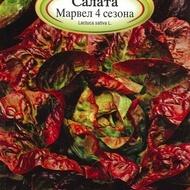 Salata MARVEL 4 - 2 gr - Seminte de Salata Soi timpuriu de salata lunecoasa Florian Bulgaria