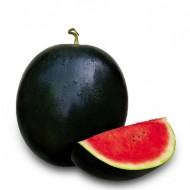 Seminte pepene verde Charisma F1/ ZKI 10172 F1 (1000 seminte), tip crimson, ZKI