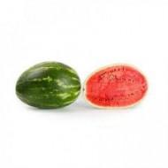 Seminte pepene verde Morgan F1 (100 seminte), tip Crimson Sweet, Rijk Zwaan