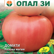 Seminte Rosii Rozova Maghia (Magie Roz), Toamte Roz (0.2 gr) Soi Gigant, Opal Bulgaria