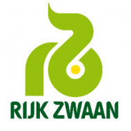 Seminte rosii TY12 F1 (100 seminte), timpurii, Rijk Zwaan
