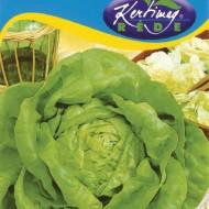 Seminte salata May King (3 gr), salata capatana, Kertimag