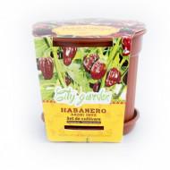 Set de cultivare - Ardei iute Mexican Habanero Chocolate, Colectia City Garden