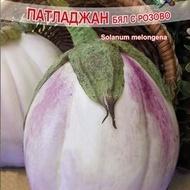 Vinete ALBE ROZ (BYAL ROZOV) - 3 gr - Seminte de Vinete Albe cu Roz Florian Soi timpuriu alb roz