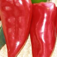 Ardei Capia Kurtovska (75 seminte), ardei capia pulpa groasa, gustoasa, dulce, Agrosem