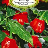 Ardei iute KAMBANKI - 0.25 gr - Varietate ornamentala de ardei pitic iute destinat pentru hobb