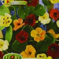 Condurul Doamnei - Seminte Flori Condurul Doamnei CATARATOARE Mix de la Florian