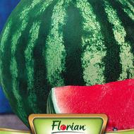 Crimson Sweet (500 gr) Seminte de Pepeni Verzi Crimson Sweet Soi Timpuriu Rezistent la Transport si Depozitare, Florian