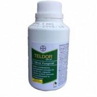 Fungicid Teldor 500 SC (100 MILILITRI), Bayer CropScience