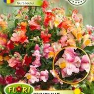 Gura leului PENDULA - Seminte Flori Gura Leului Pendula de la Florian