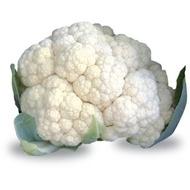 Malaga F1 - 1000 sem - Seminte de conopida semi-timpurie la 80-85 de zile de la transplantare cu capatana de o calitate excelenta in forma de cupola de culoare alb pur cantarind in medie 2-2,5 kg de la Sakata