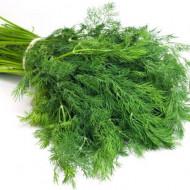 Seminte marar Common Comun Comon (10 kg), de la Florian