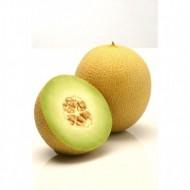 Seminte pepene galben Rachel (1000 seminte), tip Ananas, Hazera