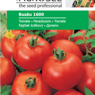 Seminte rosii Buzau 1600 (1 g), semitardiv, Agrosel
