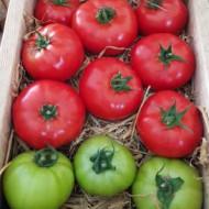 Seminte rosii Lagos F1 (100 seminte), nedeterminate, Top Harvest