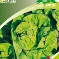 Seminte salata May King (5 gr), salata capatana, Kertimag
