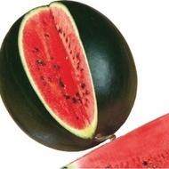 Sugar Baby - 500 grame - Seminte de pepene verde forma rotunda iar miezul rosu aprins de la Clause
