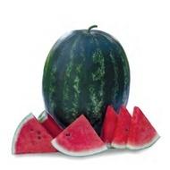Usta F1 - 1000 sem - Seminte de pepene verde tip crimson sweet culoare rosu inchis de la Yuksel