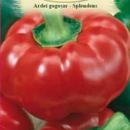 Ardei Splendens (1 kg), seminte de ardei gogosar soi timpuriu productiv, Agrosem