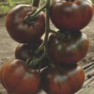 Bronson F1 (250 seminte) tomate negre ciocolatie tip Kumato, crestere nedeterminata, Clause