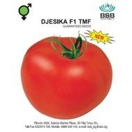 Djesika F1 – 0.5 gr – Seminte Organice BIO de Tomate cu Crestere Nedeterminata Hibrid Extratimpuriu de la Biosem Bulgaria