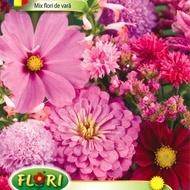 Flori de Vara Mix - Seminte Flori de Vara Mix de la Florian