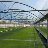 Folie solar TUV E/AG, EVA, IR 200 mic 9.5m, (pret pe ml), folie polietilena sera de calitate superioara, Patilux