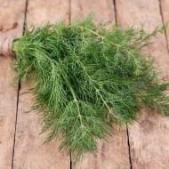 Marar autohton - 5 grame - Seminte de marar traditional bulgaresc caracterizat prin aroma puternica si placuta tolerant la diferite conditii meteorologice de la Florian