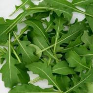 Rucola (2000 seminte) de rucola planta aromatica de la Agrosem