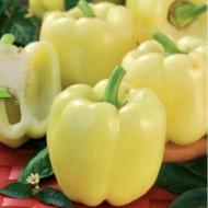 Seminte ardei gras Galben superior (0.5 g), forma tronconica, Agrosel