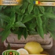 Seminte busuioc lamaie (1 gr), Seminte Plante Medicinale Busuioc Lamaie, Florian