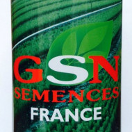 Seminte pepene verde Crimson Sweet (100 gr) semitimpuriu coaja dungata, GSN Semences