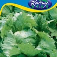 Seminte salata Tarzan (2 gr), salata iceberg, Kertimag