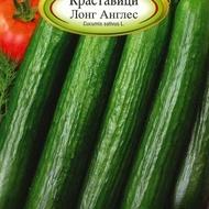 Castraveti LONG ANGLES - 2 gr - Seminte de Castraveti Soi pentru salate Florian Bulgaria