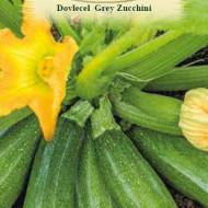 Dovlecel Grey Zucchini (21 seminte), dovlecel soi timpuriu, miez alb, gustos, Agrosem