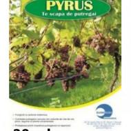 Fungicid Pyrus 400 SC (20 MILILITRI), Sumi Agro