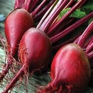 Manzu F1 - 10.000 sem - Seminte de sfecla rosie cu radacini rotunde gust bun si frunze verticale de la Bejo