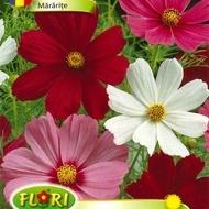 Mararite Cosmos Bipinnatus - Seminte Flori Mararite de la Florian