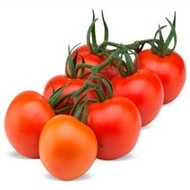 Marylu F1 – 100 sem – Seminte de Tomate Nedeterminate de la Hazera